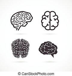 hersenen, -, set, van, vector, illustraties, en, iconen