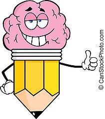 hersenen, slim, groot, potlood