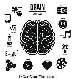 hersenen, stijl, set, menselijk, infographics, eenvoudig