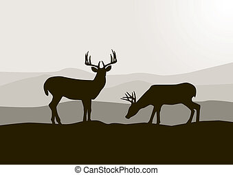 hertje, silhouette, in, de, wild