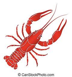 hervido, cangrejos de río, vector, cangrejo río, rojo