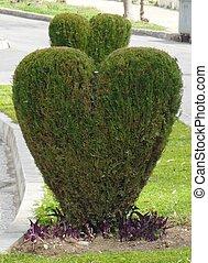 Herz auf Herz - Zwei Herzen aus Gruen Ein Herz fuer zwei