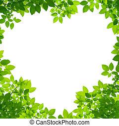 herz, blätter, form, grüner hintergrund, weißes