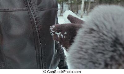 herz, hände, frau, winter, schnee