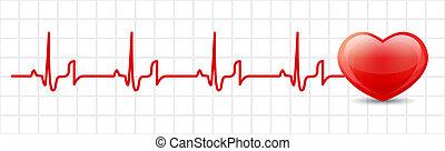 herz, kardiogramm