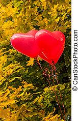 herz, liebe, luftballone, draußen