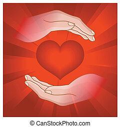 herz, menschliche hand