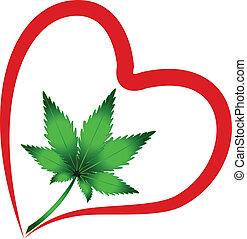 herz, pflanze, blatt, cannabis, vektor, logo, ikone