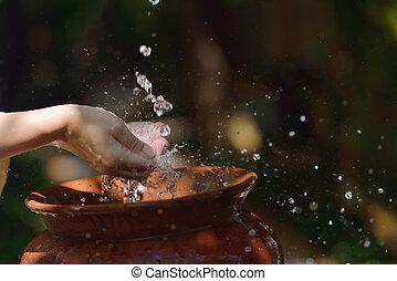 het bespaten, zoet water, op, vrouw, handen