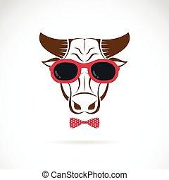 het dragen van zonnebril, achtergrond., vector, stier,...