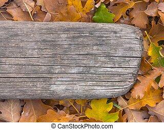 het gebladerte van de herfst, en, oud, plank