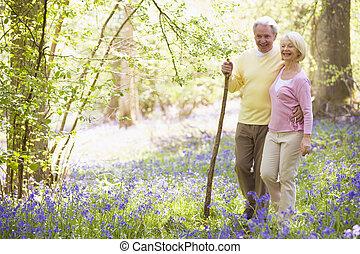 het glimlachen, wandelende, buitenshuis, paar, stok
