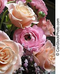 het gluren, roze