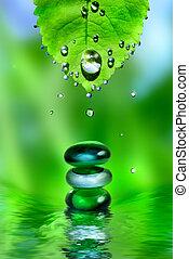 het in evenwicht brengen, spa, glanzend, stenen, met, blad, en, waterdruppels, op, groene achtergrond