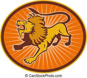 het kijken, leeuw, boos, op
