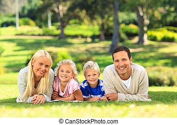het liggen, park, gezin, dons