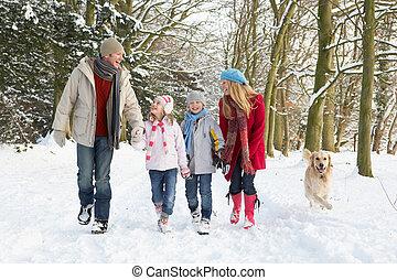 het lopen van de familie, dog, door, besneeuwd, bosterrein