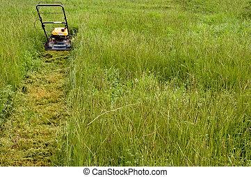 het maaien de grasveld