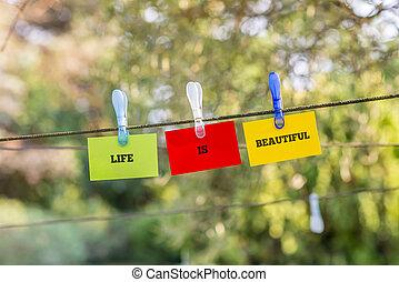 het mooie leven, concept