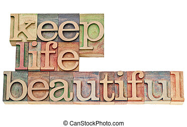 het mooie leven, hout, type, bewaren