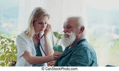het onderzoeken, bezoeker, wheelchair, jonge, gezondheid,...
