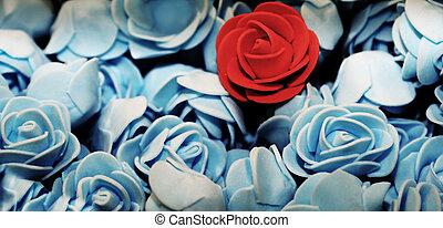 het rood nam toe, op, de, velen, blauwe , rozen