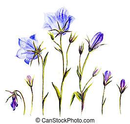 het schilderen watercolor, van, de, klok, bloemen