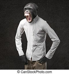 het schreeuwen, geërgerd, aap
