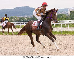 het snelen, paarde