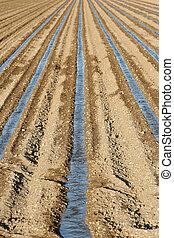 het systeem van de irrigatie