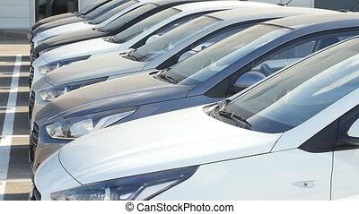 het verkopen, en, het verhuren, auto's, concept., roeien,...