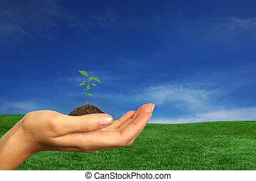 het vernieuwen, aarde, middelen, voor, ons, toekomst