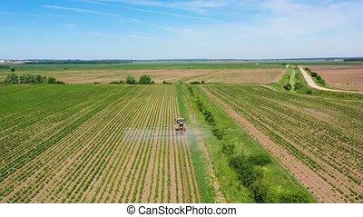 het verstuiven, akker, sprayer, groente, pesticiden, tractor