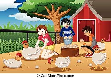 het verzamelen, boerderij, eitjes, kinderen