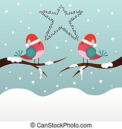 het zingen, kerstmis, vogels