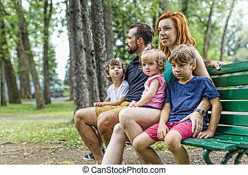 heureux, banc, parc, famille, séance