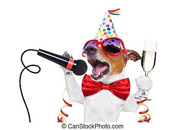 heureux, chien, nouvel an