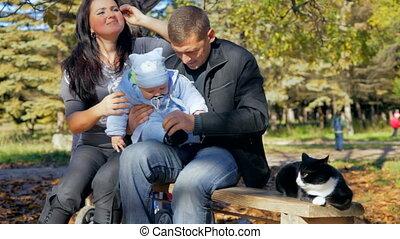 heureux, enfantqui commence à marcher, famille, chat