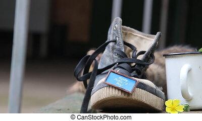 heureux, mères, chaussure, inscription, une, day.