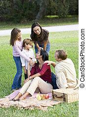 heureux, moderne, multiculturel, famille, apprécier, a, pique-nique