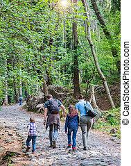 heureux, randonnée, famille, forêt