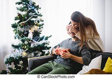 heureux, yeux, sien, couple, couverture, jeune femme, surprise, vacances, noël, petit ami