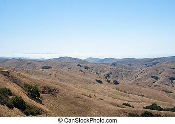 heuvels, op, kust, mist, californië, wikkeling
