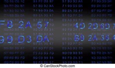hexadecimal code - data flow - blue - motion graphic...