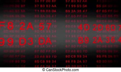 hexadecimal code - data flow - red - motion graphic...