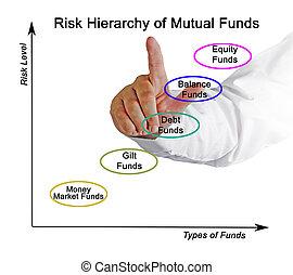 hiérarchie, mutuel, risque, fonds