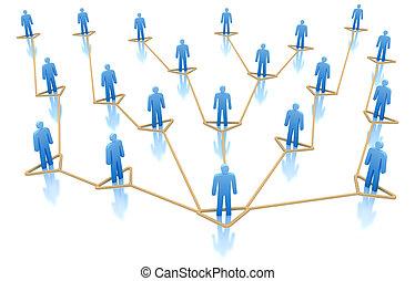 hiërarchie, netwerk, zakelijk, conce