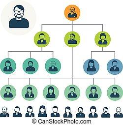 hiërarchie, of, organisatie, personeel