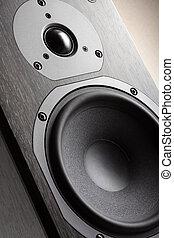 Hi-Fi Acoustic System Close-up (Dark Oak texture)