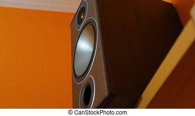 Hi-fi Loudpeaker Membrane